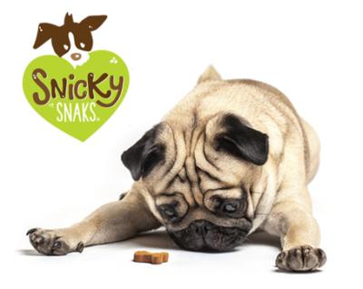 snicky-dog-2