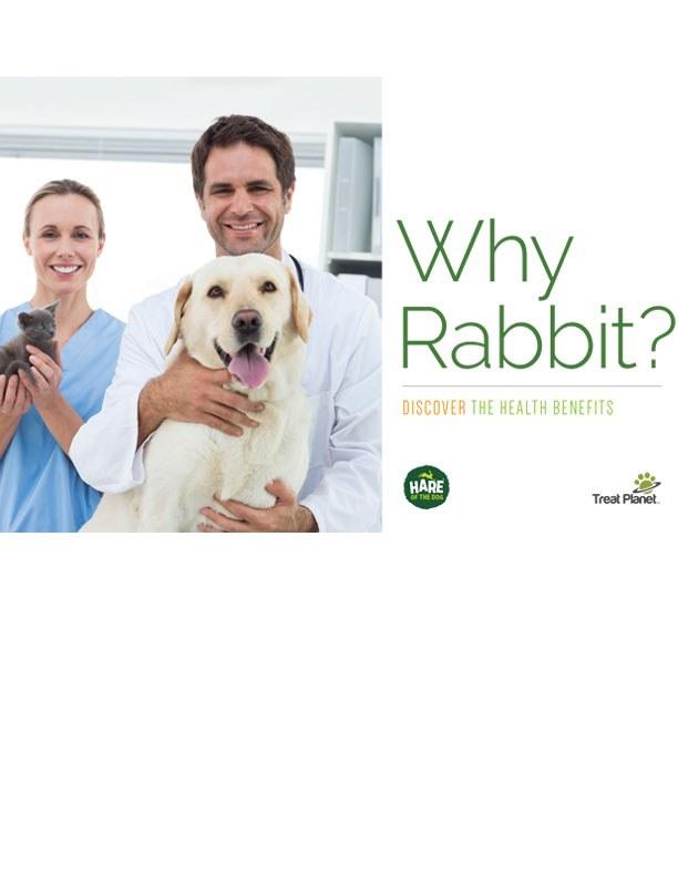 Why Rabbit?